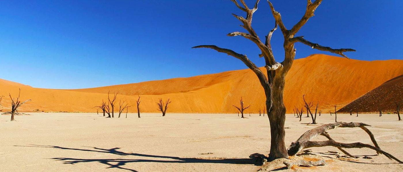 Desert landscape - Upington 4x4 Rentals