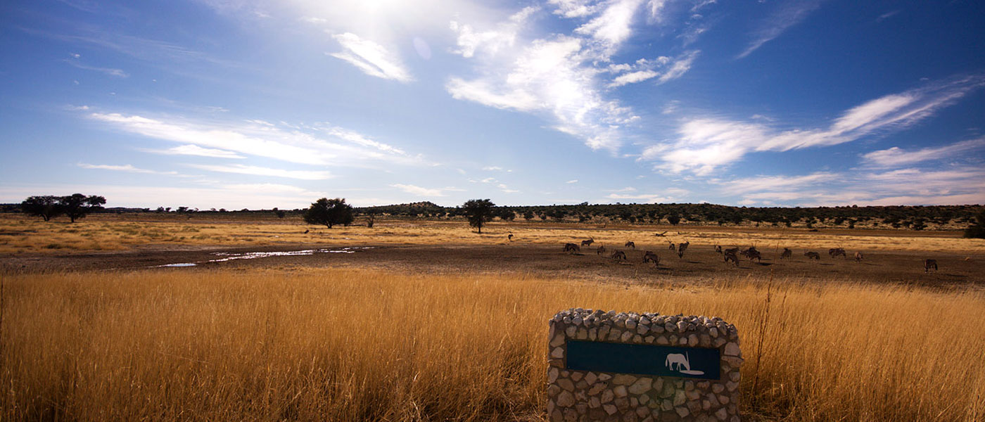 Safari Game Farm - Upington 4x4 Rental