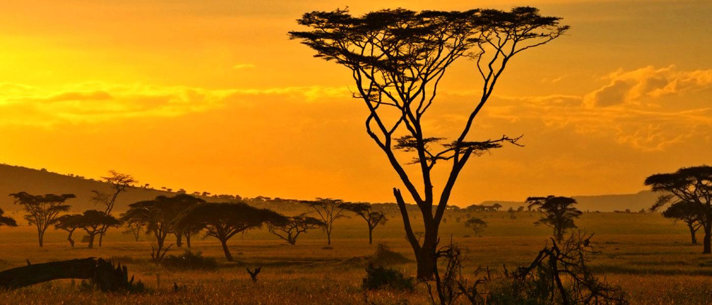 Safari sunset - Upington 4x4 Rentals